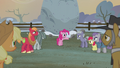 "Pinkie Pie ""it's tradition to raise a flag"" S5E20.png"