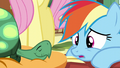 "Rainbow ""too many Daring Do stories"" S5E5.png"