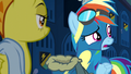 Rainbow confused by Soarin's nickname S6E7.png