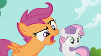 Scootaloo 'A what now' S2E06