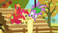 Spike getting flung around S1E13.png
