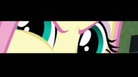Super close-up on Fluttershy's determined eyes EGDS10