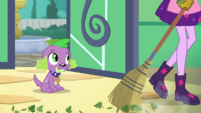Twilight Sparkle sweeping leaves off the floor EGDS8