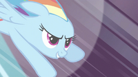 711px-Rainbow Dash 'Best. Wedding.' S2E26