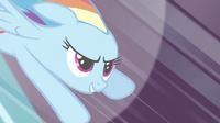 711px-Rainbow Dash 'Best. Wedding.' S2E26
