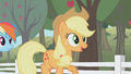 "Applejack ""Drummin' up business for the farm"" S01E03.png"