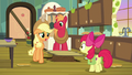 "Applejack ""anytime Big Mac and I ever asked"" S7E13.png"