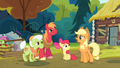 Applejack 'She does not have to feel obliged to consider herself one' S4E09.png