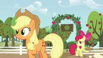 Applejack wants to talk with Big Mac S5E17