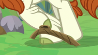 Autumn Blaze trips over tree root S8E23