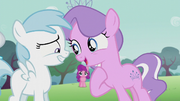 Cotton Cloudy smiles nervously while Diamond Tiara talks directly at her S5E18