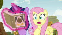 "Fluttershy ""then came here and caused"" S9E22"