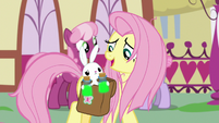 "Fluttershy ""told us to take it together"" S9E18"