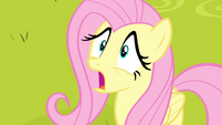 Fluttershy in shock S4E14