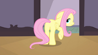 Fluttershy looking back to Rarity and Big Mac S4E14