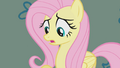 Fluttershy looks down at her shadow S1E07.png