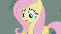 Fluttershy looks down at her shadow S1E07