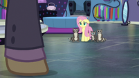 Fluttershy sees another customer entering S8E4