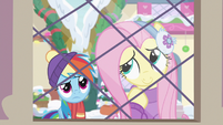 Fluttershy thinks about what she doesn't like MLPBGE