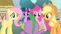Main ponies hurried explanation S01E19.png