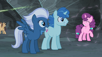 Night Glider, Party Favor, and Sugar Belle back to normal S5E2