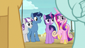 "Princess Cadance ""the other side of the deck"" S7E22.png"