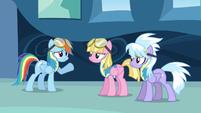 Rainbow Dash asking for wingpony S3E7