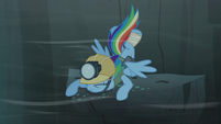 Rainbow Dash back on the ledge S5E8