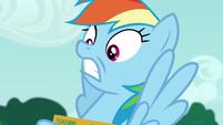 Rainbow Dash in sheer disbelief S6E15