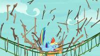 Rainbow falls onto Applejack's bridge S8E9