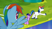 Shining Armor explaining that the Crystal Ponies got hurt S3E12
