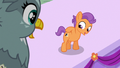 Tender Taps shows his cutie mark to Gabby S6E19.png