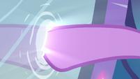 Twilight colocando sua pata dentro do espelho EG