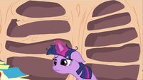 Twilight fatigue S2E21