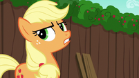 AJ --who knows tradition better than Apples--- S6E14