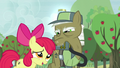 Apple Bloom apologizes to pest pony for repeating what he says S5E04.png