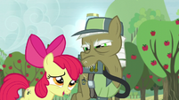 Apple Bloom apologizes to pest pony for repeating what he says S5E04