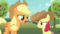 """Applejack """"you don't need a fancy scarf"""" S7E9.png"""