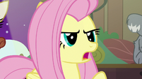"Fluttershy ""I won't give up!"" S7E5"