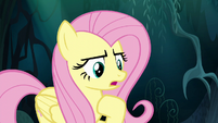 Fluttershy -you can come back with me- S6E11