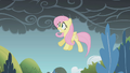 Fluttershy about to fall S01E07.png