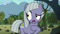 "Limestone Pie ""I'm not jealous!"" S8E3"