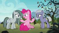 Pinkie Pie asking her sisters for help S8E3