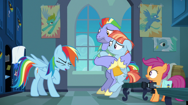 File:Rainbow Dash catching her breath S7E7.png