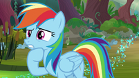Rainbow thinks of ideas to cross the swamp S8E17