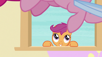 Scootaloo watches Pinkie jump back and forth S8E12