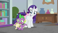 "Spike ""emergency meeting in Canterlot!"" S8E25"