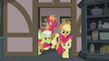 Apple family enters the Pie family kitchen S5E20.png