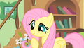 """Fluttershy """"running out of time?"""" S01E22.png"""