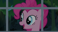 Pinkie Pie -sighing with the weight of the world- S7E18